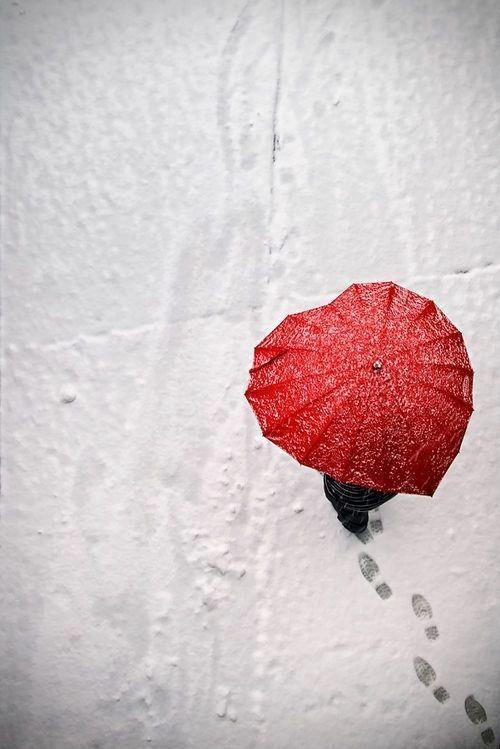 a capa guarda chuvas